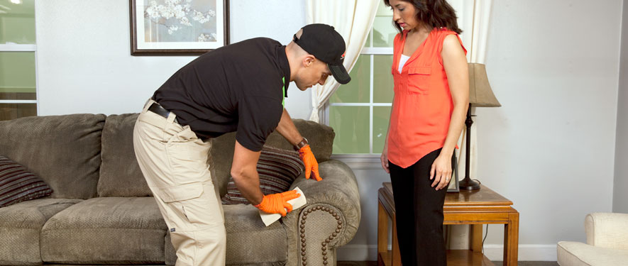 Peterborough, ON carpet upholstery cleaning